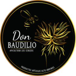 don baudilio